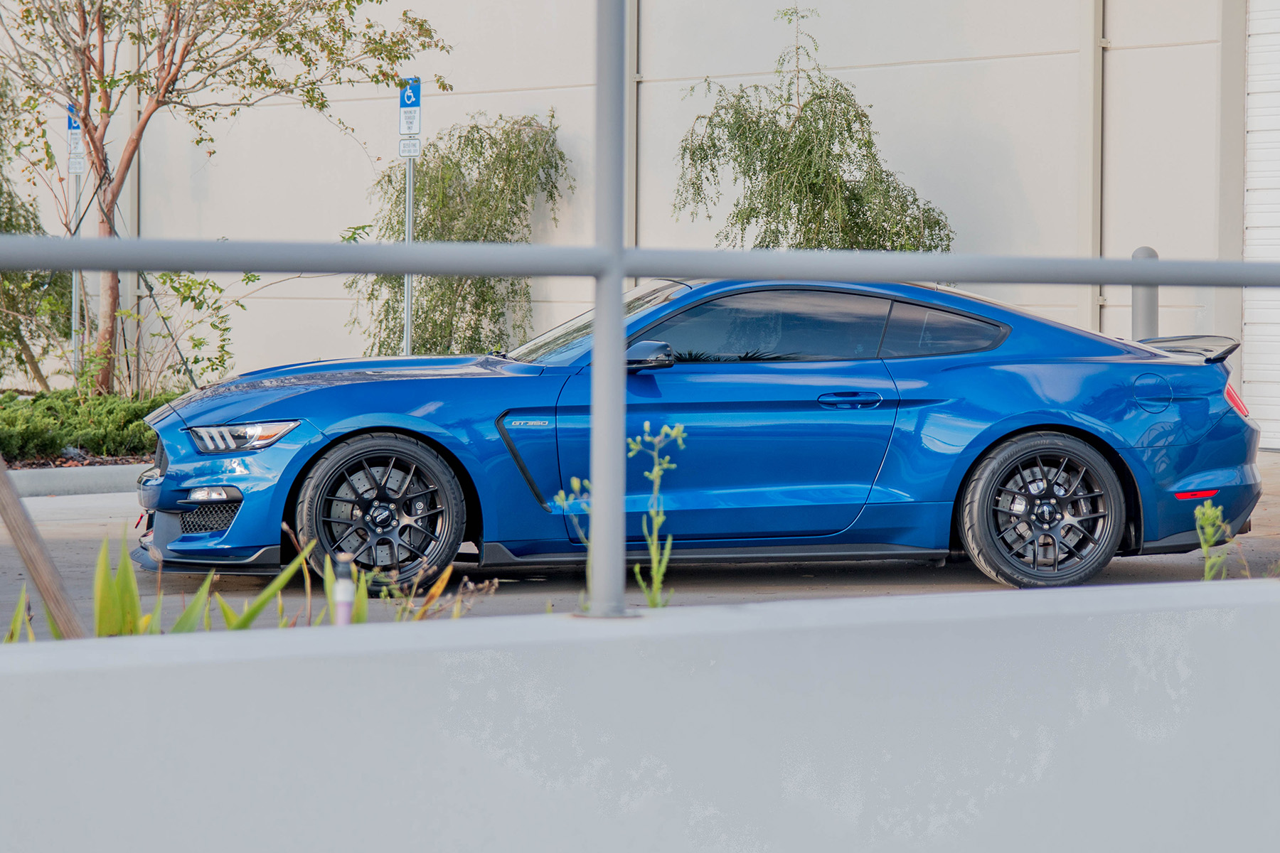 "Shelby GT350 Track Build with 19"" EC-7 Wheels"