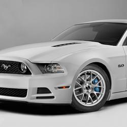 S197 & SN95 Mustang