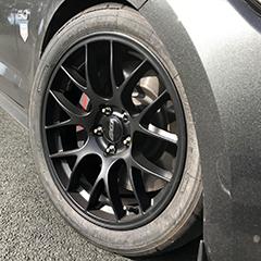 18EC7-Mustang-Face-Profile.jpg